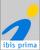 ibis prima Bildung & Beratung GmbH