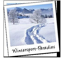 Polaroid schweiz winter